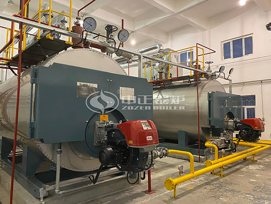Steam To Hot Water Heat Exchanger Piping Diagram